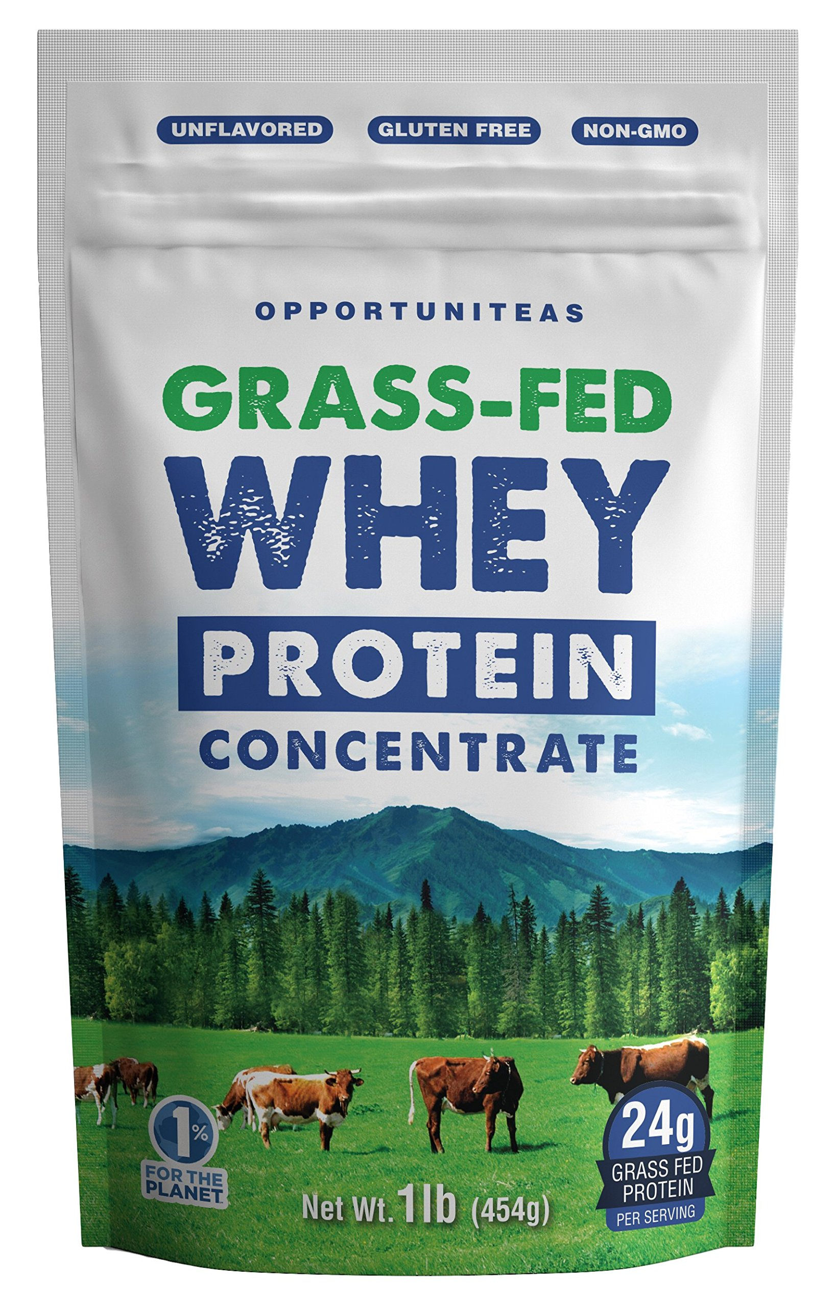 Grass Fed Whey Protein Concentrate - Premium Unflavored Protein Powder - Cold Processed Wisconsin Grass-Fed Protein for Any Smoothie, Shake, Drink, Recipe, or Food - Gluten Free & Non-GMO - 1 Pound by Opportuniteas