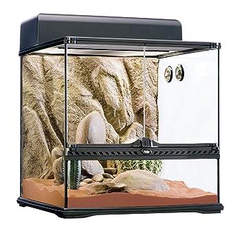 0f2883784755 Exoterra Terrarium Kit Désertique Pré Équipé pour Reptiles et Amphibiens  45x45x45 cm