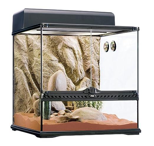 Exoterra Terrarium Kit Désertique Pré Équipé pour Reptiles et Amphibiens  45x45x45 cm  Amazon.fr  Animalerie f189777de84