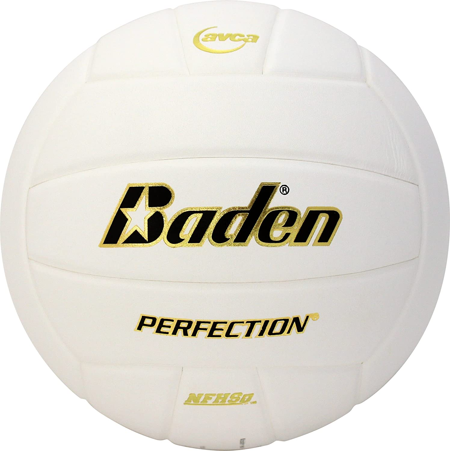 Baden Perfection Elite Leder Volleyball