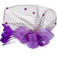 EXCHIC Sombrero Elegante de Fascinator de Las Mujeres con la Malla Grande Red-Nudo Lindo y Pluma y Bow-Knot