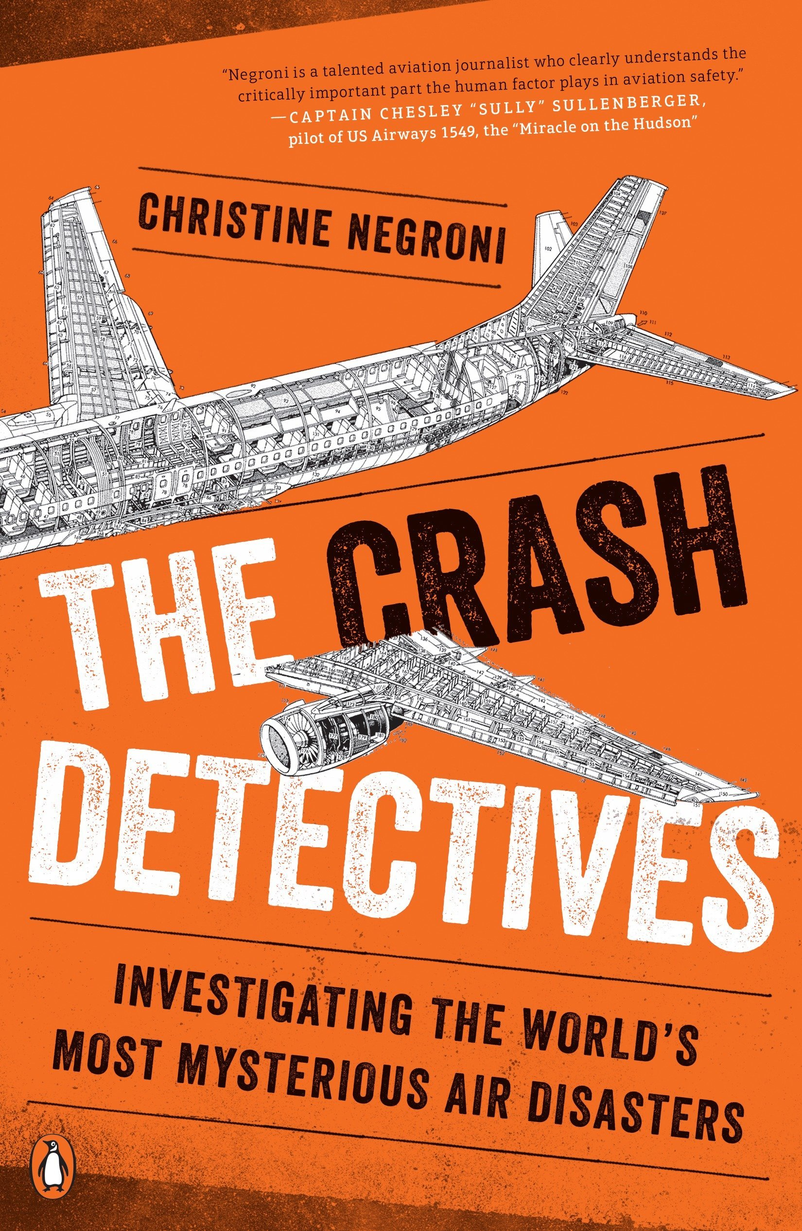 Download The Crash Detectives: Investigating the World's Most Mysterious Air Disasters pdf epub