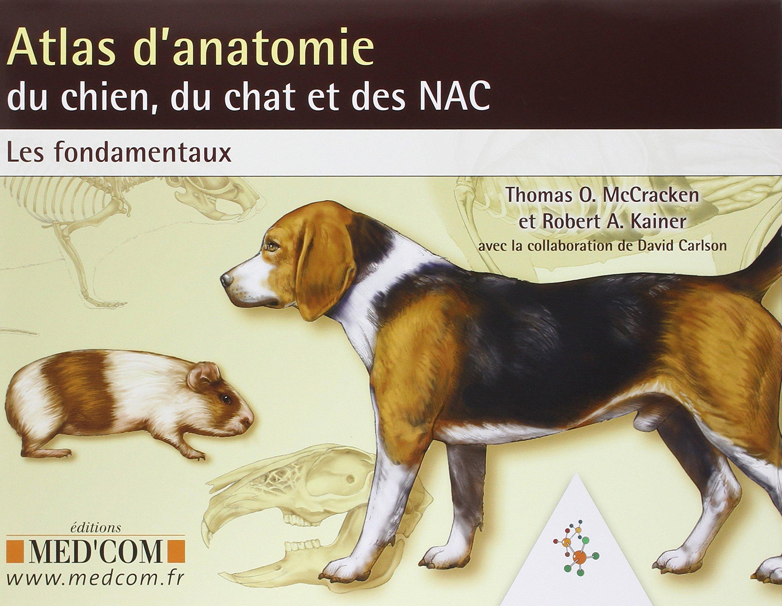 Homme Chat Rat Salle De Bain ~ amazon fr atlas d anatomie du chien du chat et des nac les