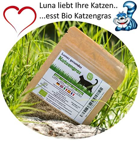 SIS Haustier Sis mascotas bio gato hierba Semillas 1 bolsa con 30 g mezcla de semillas