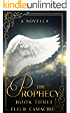 The Prophecy: (The Last Seeker, Book 3) (Tristen)