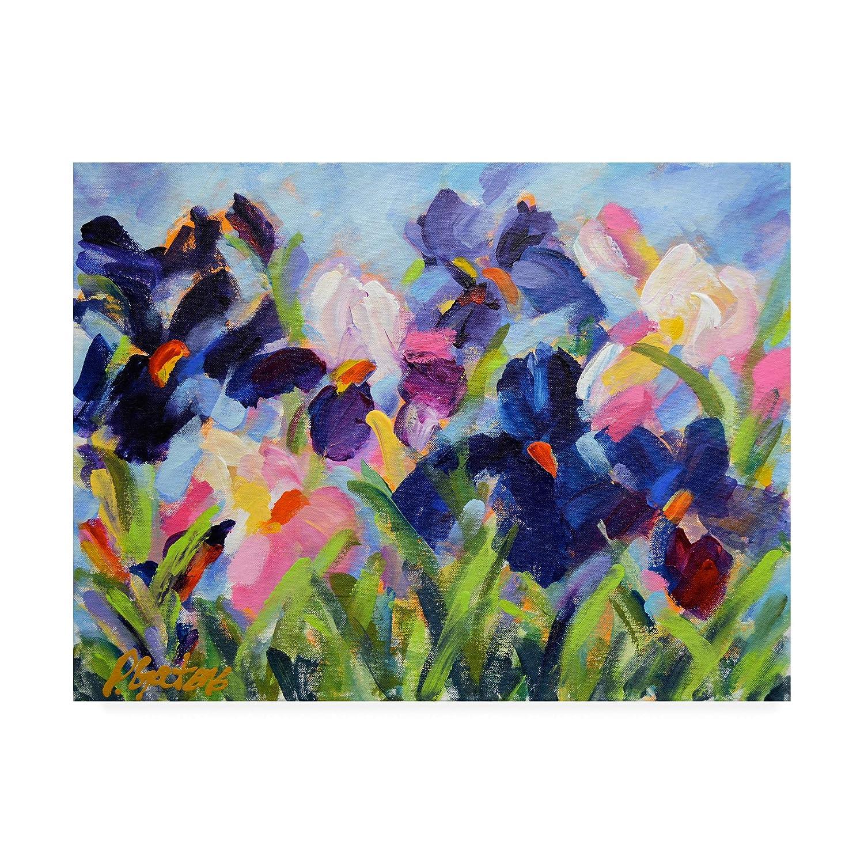 Trademark Fine Art The Iris Show by Pamela Gaten, 14x19 Multiple