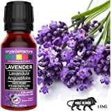 Organix Mantra Lavender Essential Oil, 100% Steam Distilled Natural, Pure and Organic