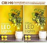 """Parmida (12 Pack) 5/6"""" Dimmable LED Disk Light"""