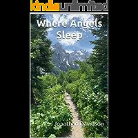 Where Angels Sleep (The Jonathan Davidson Trilogy