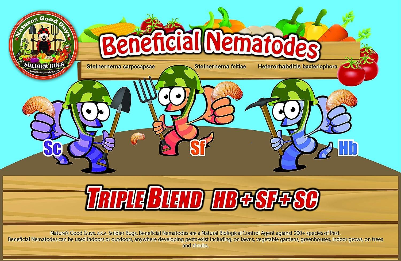 NaturesGoodGuys Beneficial Nematodes Hb+Sc+Sf - 30 Million