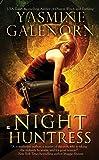 Night Huntress: An Otherworld Novel Book 5