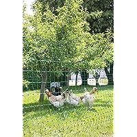 Kerbl PoultryNet Geflügelnetz ohne Strom, Doppelspitze, 50m 106 oder 112 cm grün