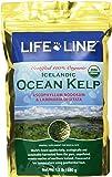 Life Line Organic Ocean Kelp Dog and Cat Supplement