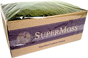 SuperMoss (21598) Sheet Moss Preserved, Fresh Green Wet Use (20-24 sq. ft. Approx 3.5lbs)