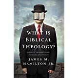 What Is Biblical Theology?: A Guide to the Bible's Story, Symbolism, and Patterns