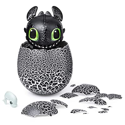 Dreamworks Dragons, Hatching Toothless Interactive Baby Dragon with Sounds, for Kids Aged 5 & Up: Toys & Games