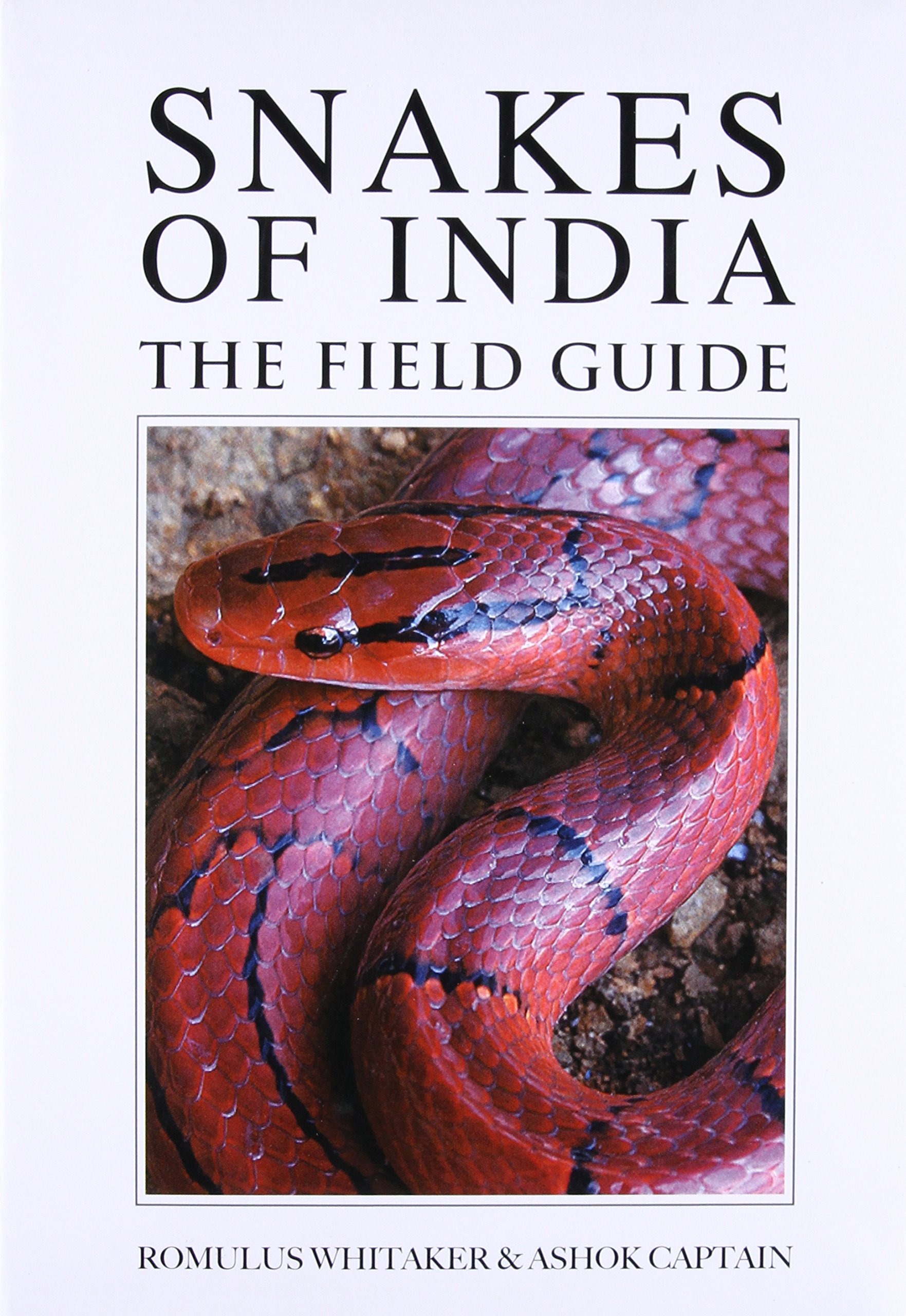 Download Snakes of India: The Field Guide pdf epub