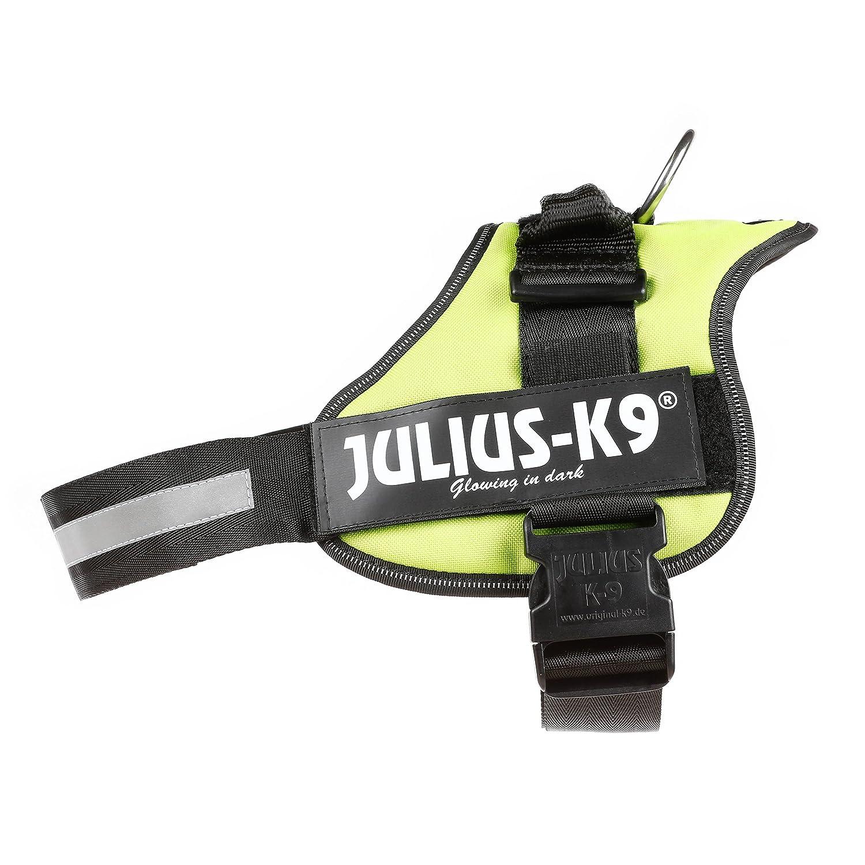 Trixie Julius-K9, 162 KW, K9-Power Dishes, Kiwi, 2, Kiwi
