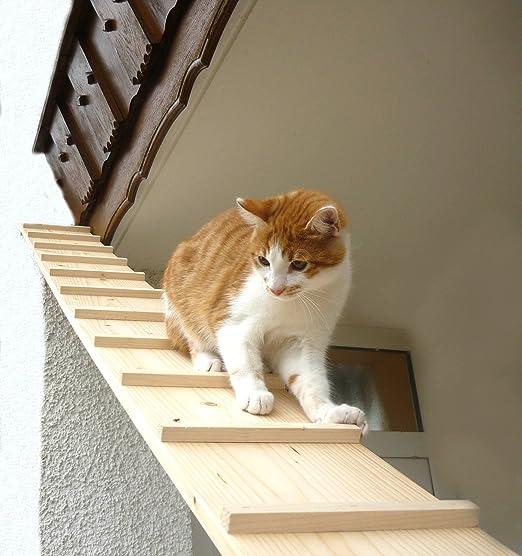 Elmato Escalera de Gato Escalera Gato 1-4 Metros Ampliable (1,98 Metros con 1 Conector): Amazon.es: Productos para mascotas