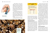 Storey's Guide to Keeping Honey Bees, 2nd