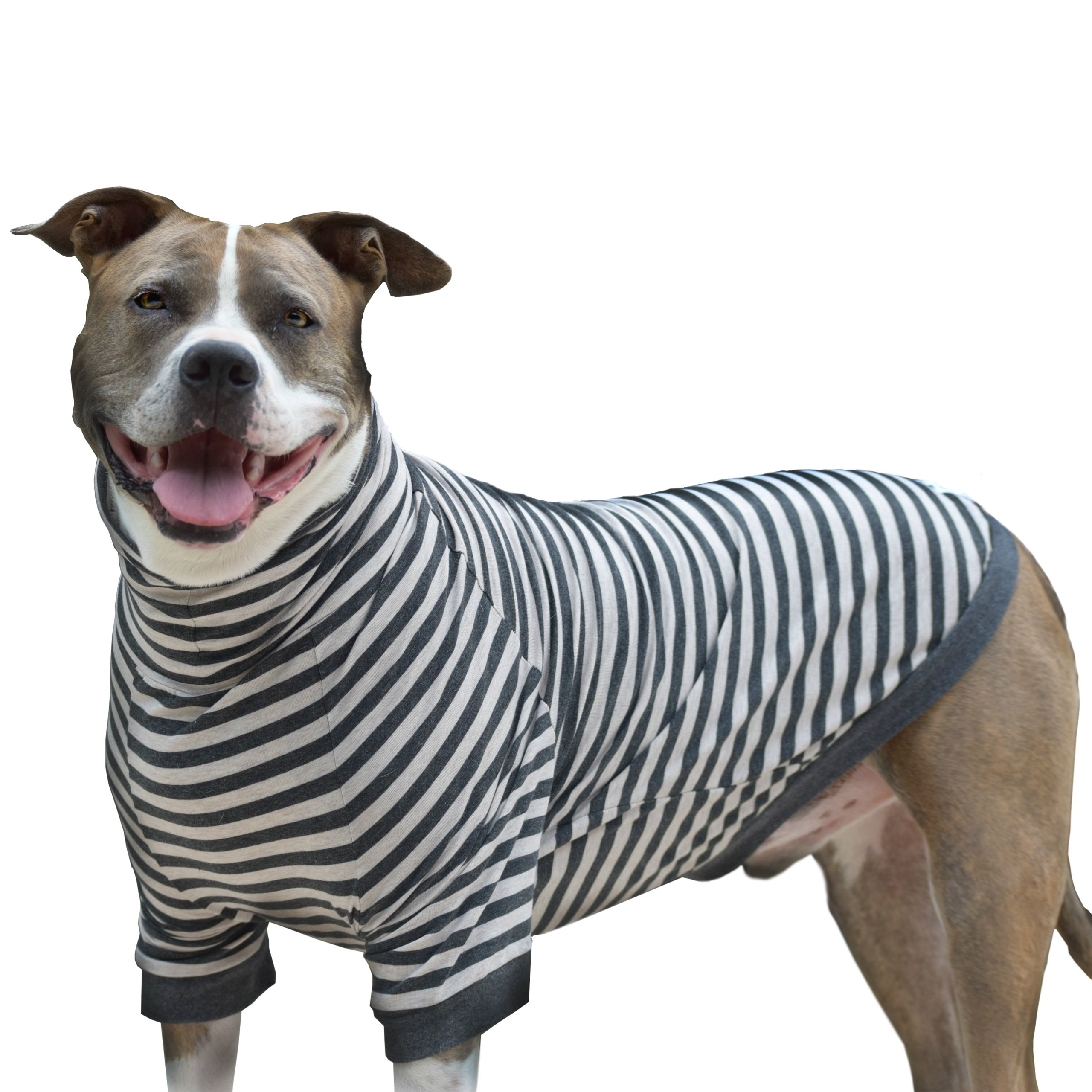 Tooth & Honey Big Dog Stripe Shirt Pullover Full Belly Coverage (Large) by Tooth & Honey