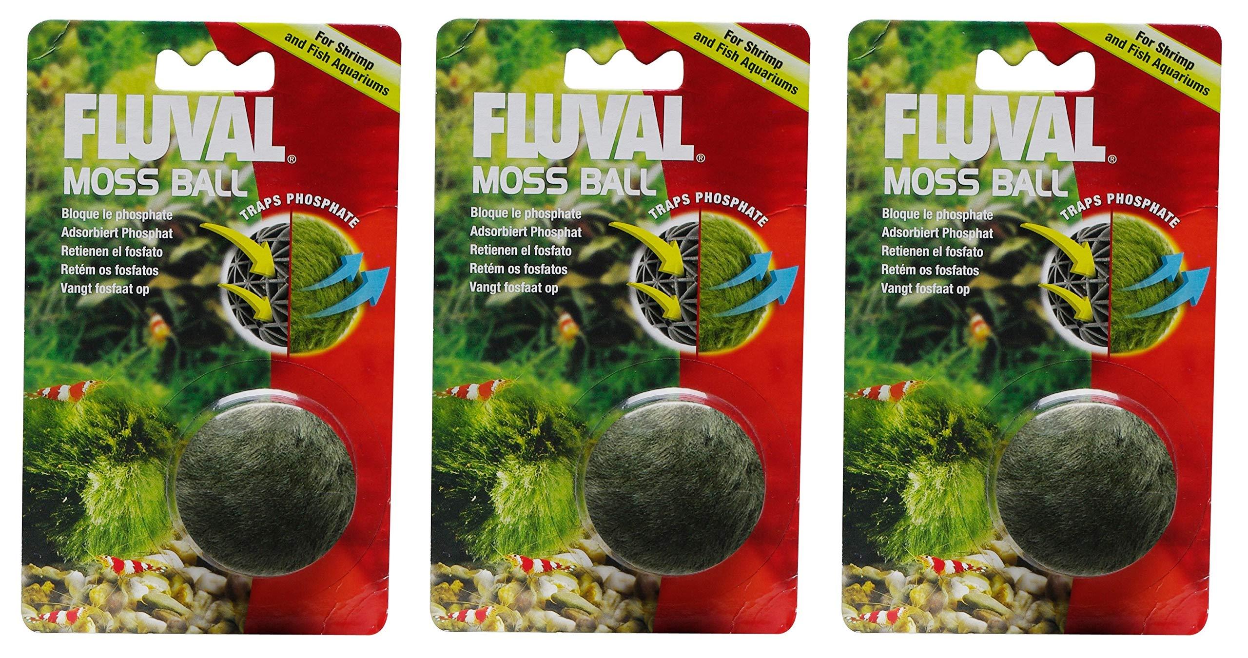 Fluval Moss Ball [Set of 3] by Fluval