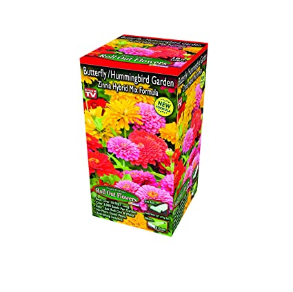 Indoor Outdoor Gardener Amazon zinnia speciality roll out flowers concentrated zinnia speciality roll out flowers concentrated flower planting gardener indoor outdoor kit by garden workwithnaturefo
