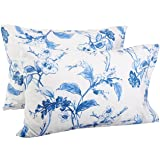 Pinzon Signature 190-Gram Cotton Heavyweight Velvet Flannel Pillowcases - King, Floral Smoky Blue