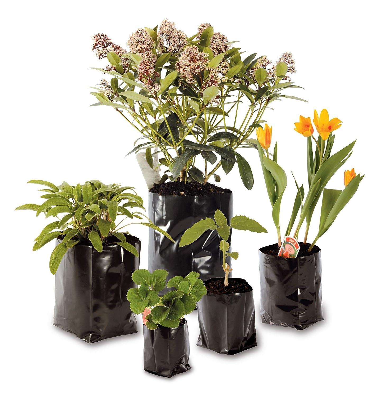 Hadopots 8L Polythene Plant Pots Pack of 50 Amazon Garden