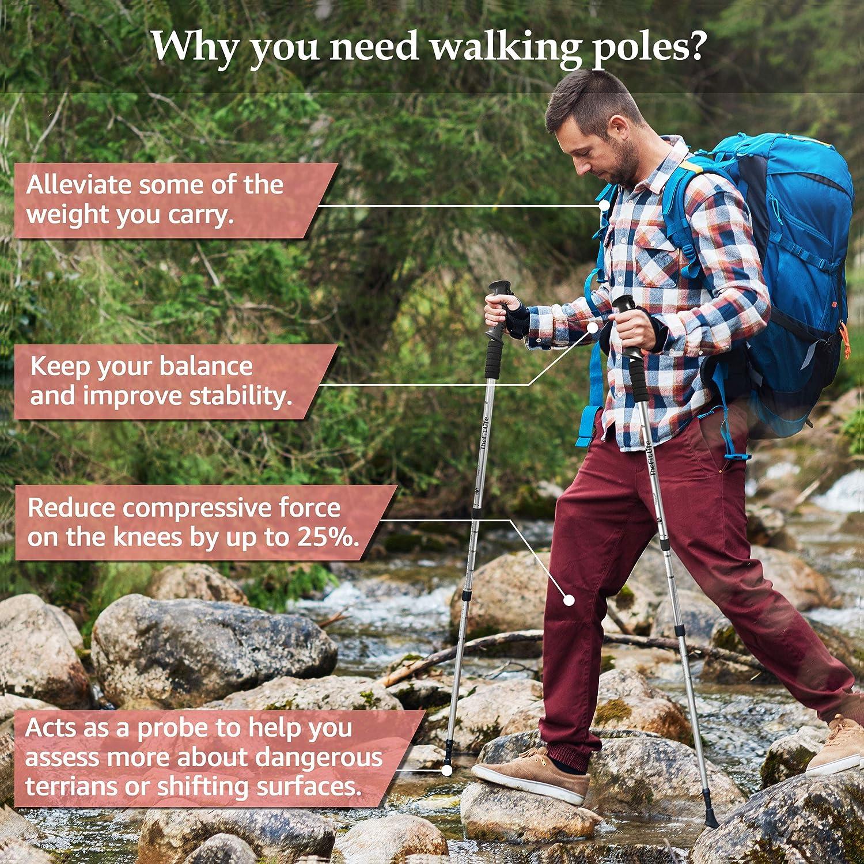 Camping Trekking Plegable Ultraligero para Senderismo mochilero monta/ñismo TheFitLife Bastones de Senderismo Caminar 2 Unidades con Sistema de Bloqueo r/ápido y antigolpes telesc/ópico