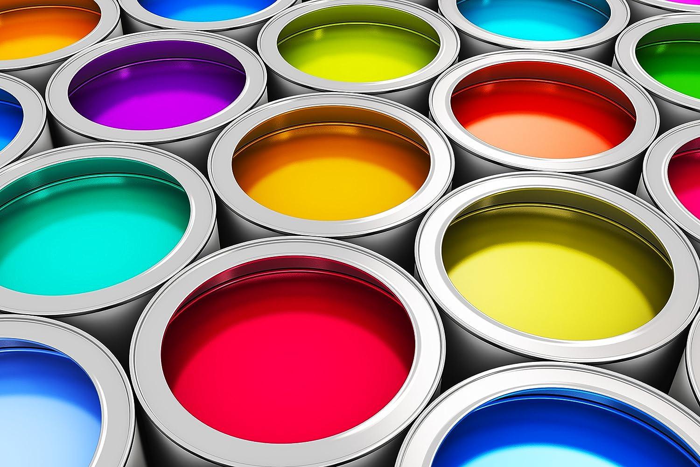 Peinture pour sol de garage, cave ou balcon - Convient pour l' inté rieur et l' exté rieur - Plusieurs couleurs au choix (blanc, jaune, rouge, bleu, vert, gris, marron, noir, incolore, terracotta) CAIRCON