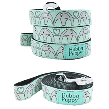 Hubba Puppy Elephant Hearts Nylon Dog Leash, Large, 1 in by 6 feet , Mint Green and Grey