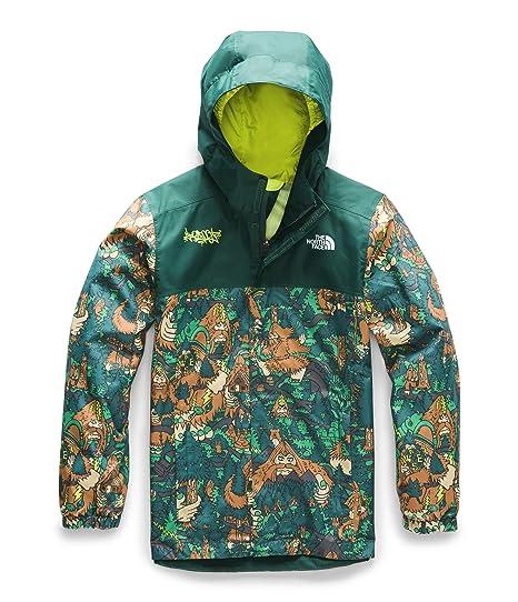 69dab3b2e The North Face Kids Boy's Resolve Reflective Jacket (Little Kids/Big Kids)