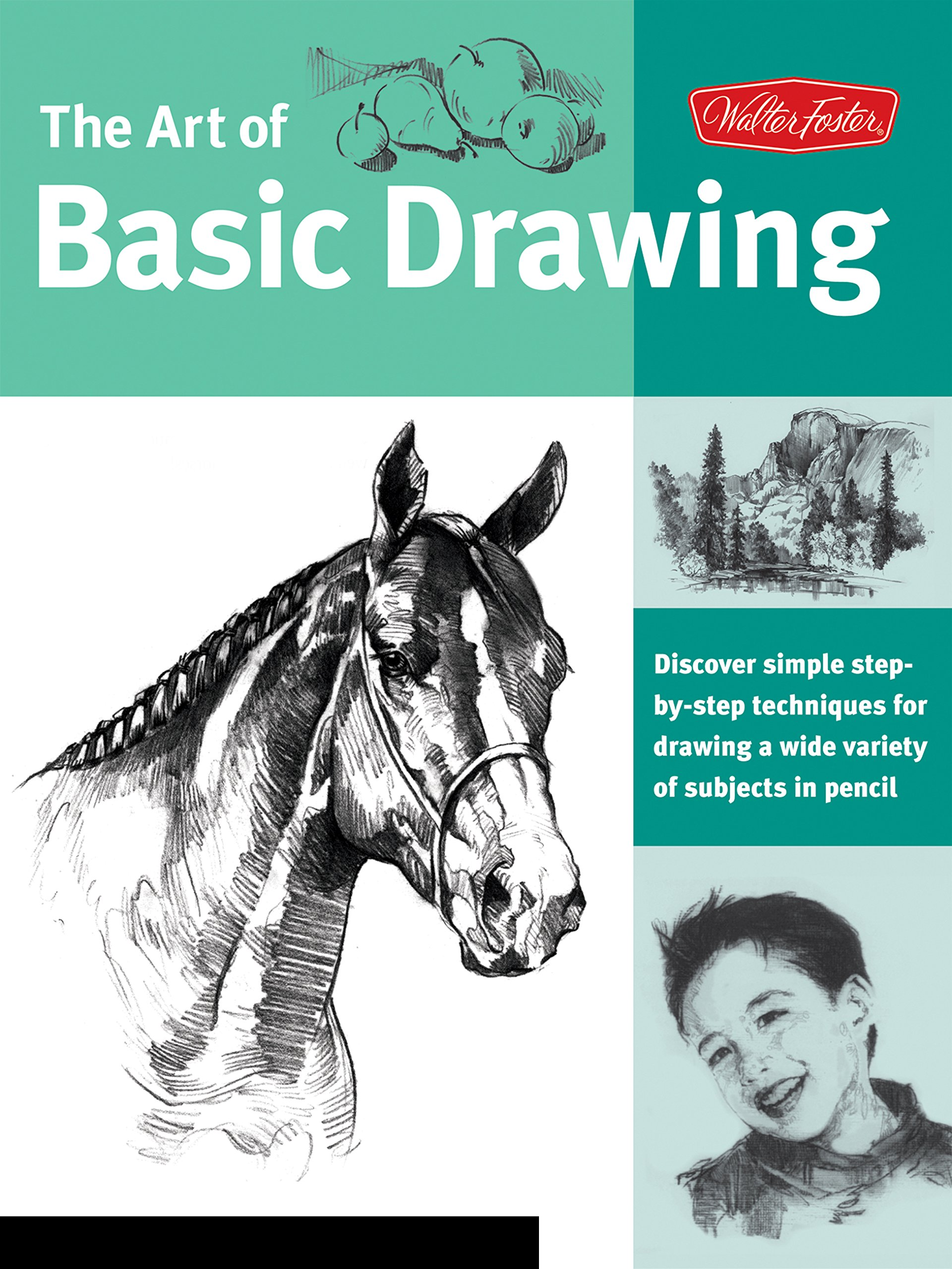 Art of Basic Drawing: Discover simple step-by-step techniques for drawing a wide variety of subjects in pencil (Collector's Series) ebook