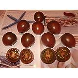 kumato schwarz braune tomate rosso bruno 10 samen. Black Bedroom Furniture Sets. Home Design Ideas