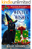 Winter Wishes: A Christmas Paranormal Cozy Mystery (Winter Witches of Holiday Haven Book 4)