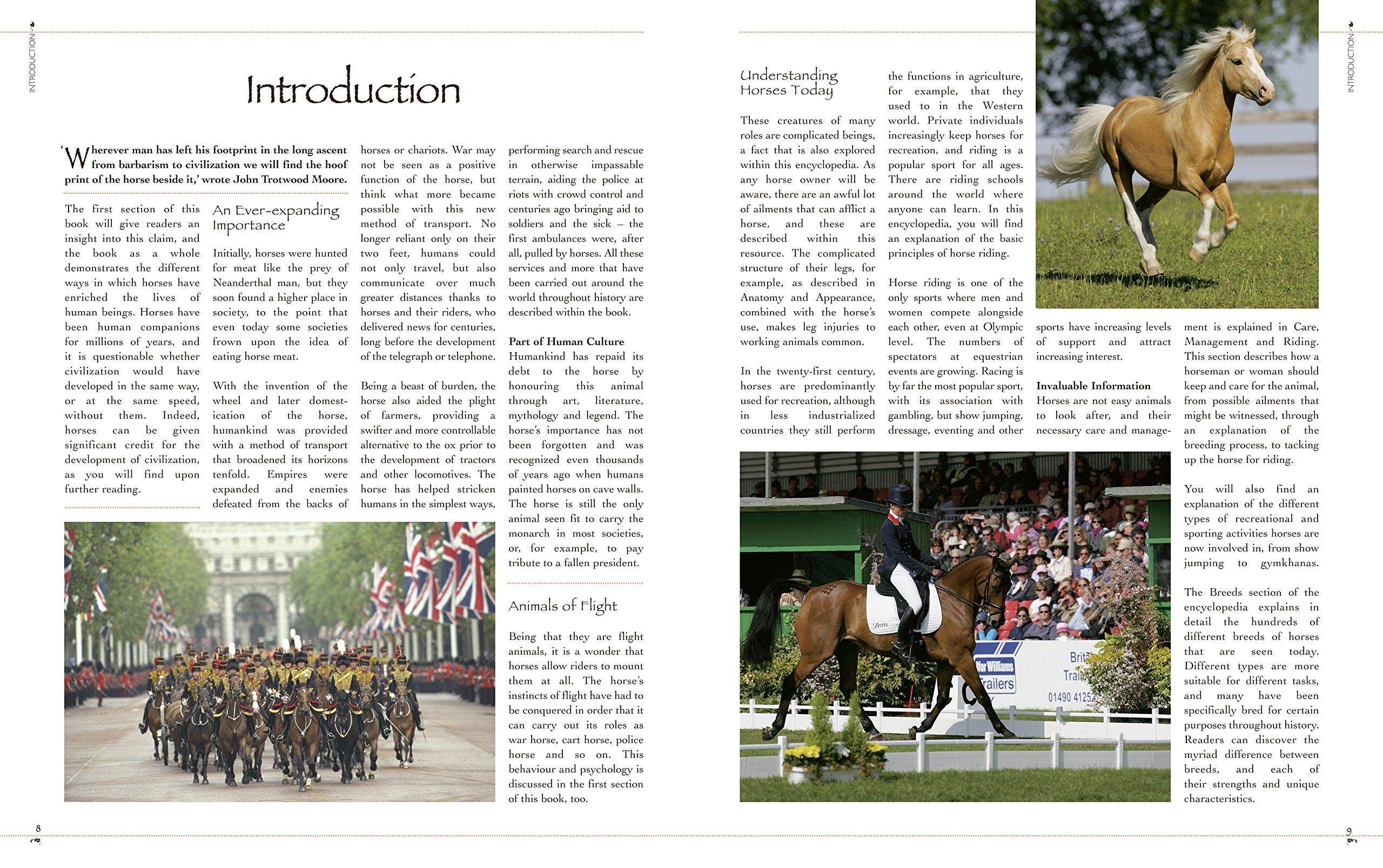 The Complete Illustrated Encyclopedia of Horses & Ponies: Catherine Austen,  Sarah Corrie, Pippa Roome, Nicola Jane Swinney: 9780857758811: Amazon.com:  Books