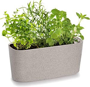 Windowsill Rectangular Self Watering Herb Garden | Plastic Planter Pot for Herbs, Greens, Flowers, House Plants and Succulents | Indoor/Outdoor Flower Pot (Stone Color)