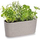 Windowsill Rectangular Self Watering Herb Garden | Plastic Planter Pot for Herbs, Greens, Flowers, House Plants and Succulent