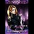 Enchanter: A Young Adult / New Adult Fantasy Novel (Princesses of Myth Book 3)