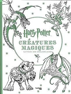 Harry Potter Le Livre De Coloriages Amazon Fr Collectif Livres