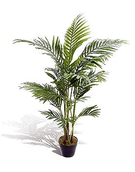 Charmant Best Artificial Palmier Aru0026eacute;ca, Type Tropical, Idu0026eacute;al Pour  Vu0026eacute;
