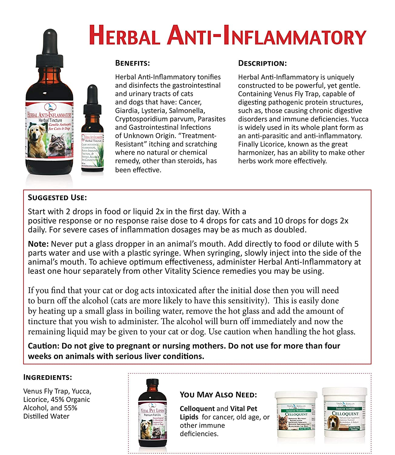 Vitality Science Herbal Anti Tincture for Cats | Supports Normal  Inflammatory Response | Disinfects Gastrointestinal Tract | Helps Colon  Health |