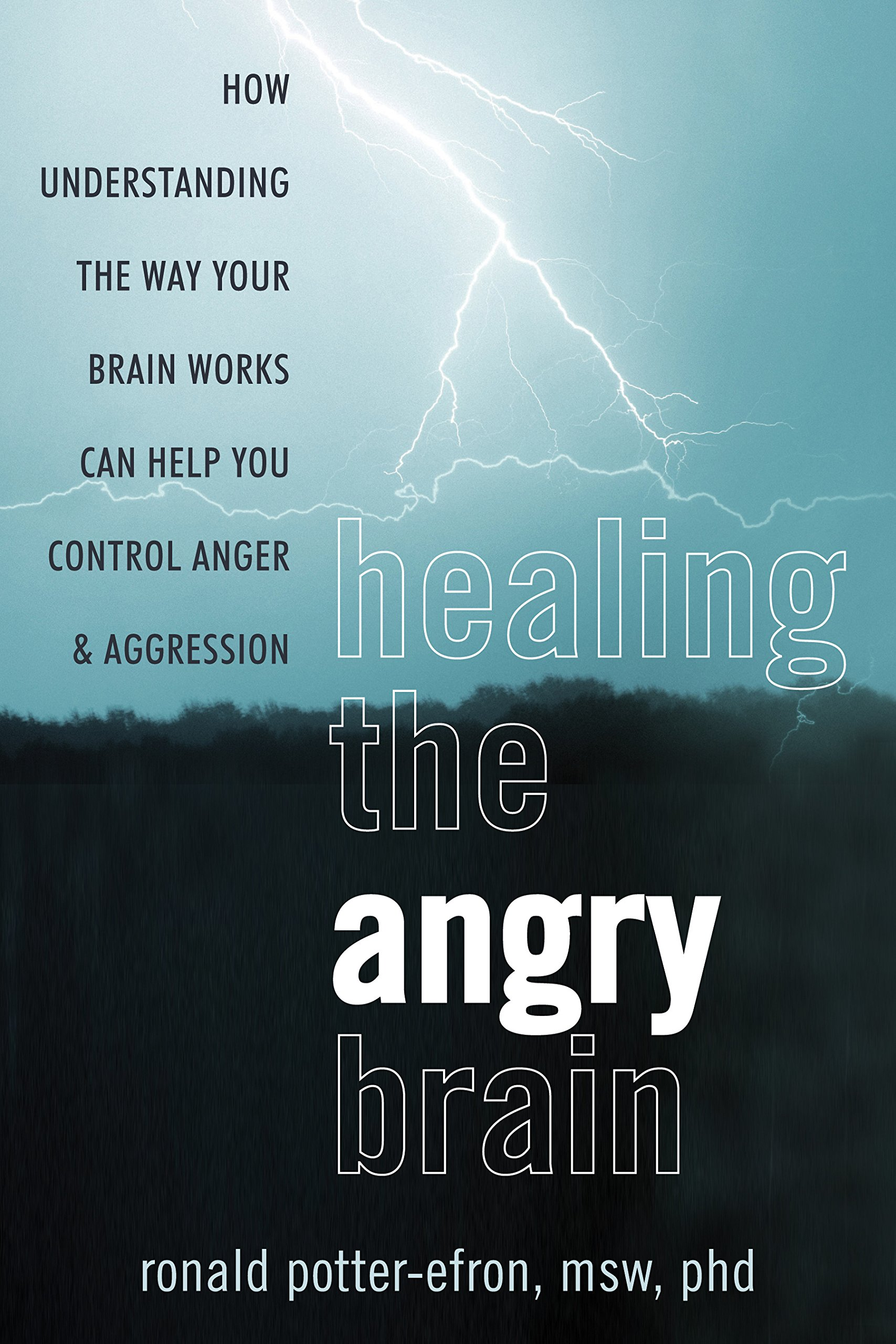 Healing The Angry Brain  How Understanding The Way Your Brain Works Can Help You Control Anger And Aggression  English Edition