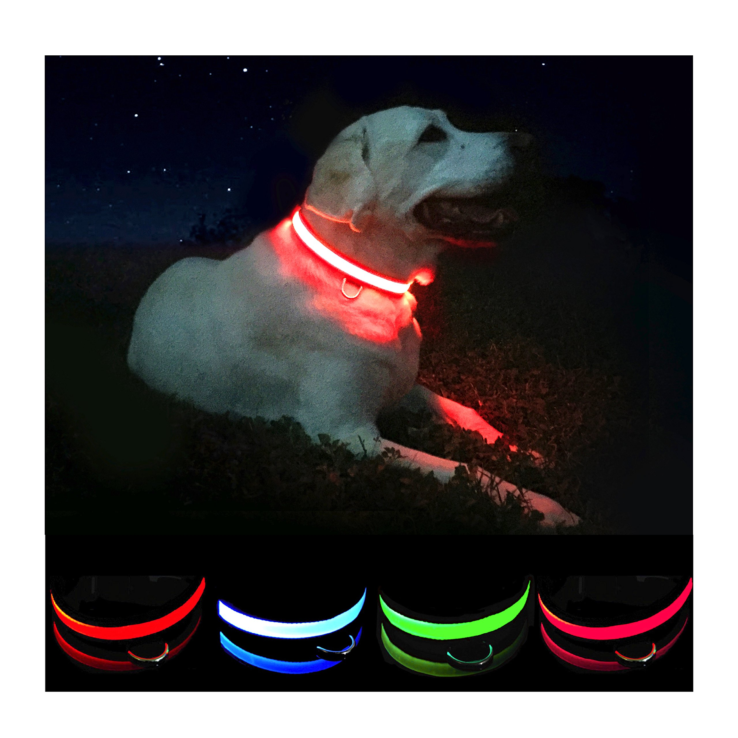 Petabunga Premium Led Dog Collar Usb Rechargeable & Superior Durability To In.. 14