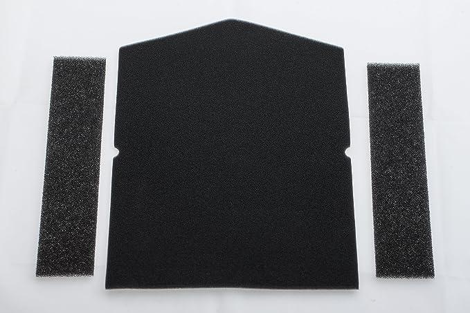 Miele Filtro para bombas de calor secador (1 x filtro puerta, 2 x filtro