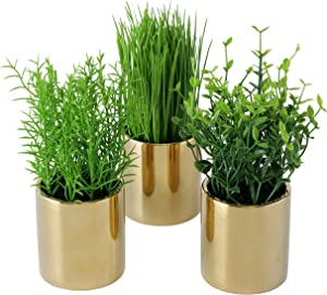 WHW Whole House Worlds 3 Piece Realistic Potted Plant Set, Gold Metallic Cache Pots, Green Leaves and Grass, Each 7 Inches Tall, Faux Silk Plastic