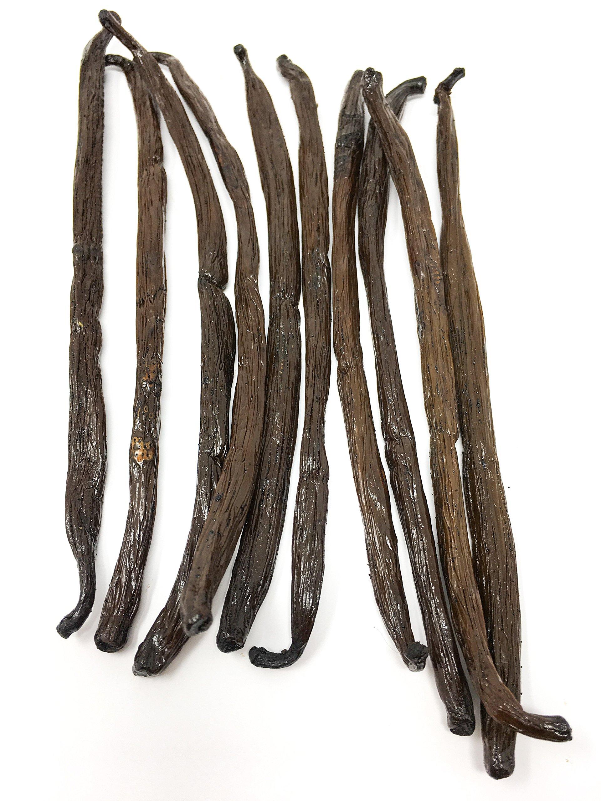 Madagascar Bourbon Vanilla Beans (Vanilla Planifolia) by Slofoodgroup (10 vanilla beans)