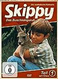 Skippy - Das Buschkänguruh - Teil 1 [Edizione: Germania]