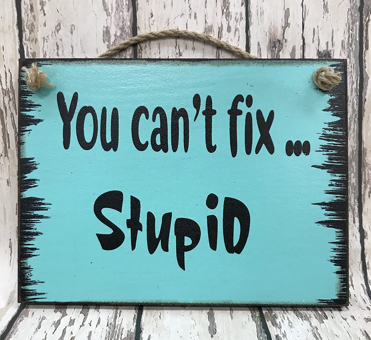 OFFICE HUMOR SIGN You CAN'T FIX STUPID 6X8 Reclaimed Wall